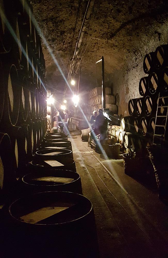 Barrel cellar at López de Heredia, in Haro