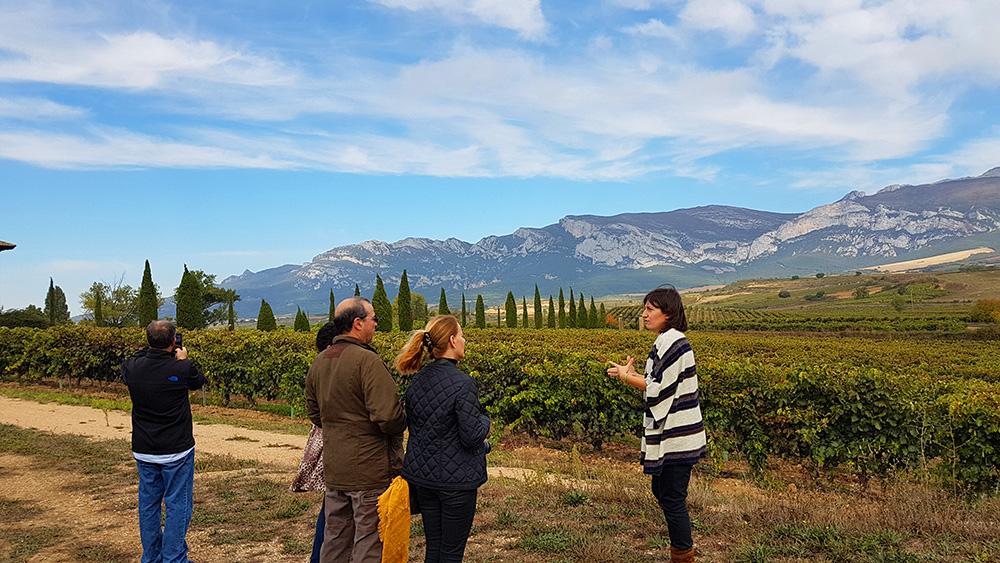 Walk among vineyards at Torre de Oña