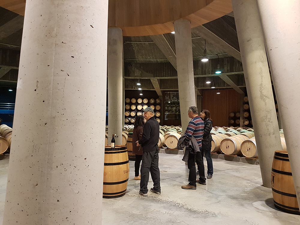 Barrel cellar in Viña Real, a modern winery designed by Philippe Mazieres