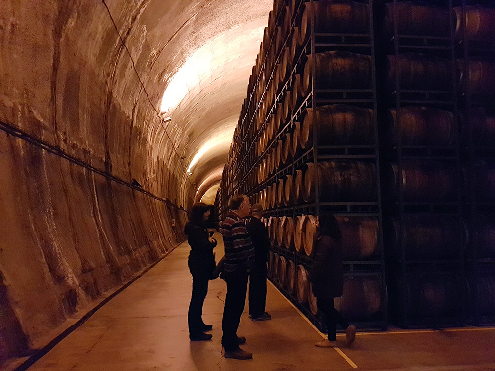Impressive underground cellar in Viña Real