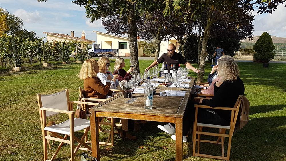 Tasting by the vineyards at La Emperatriz