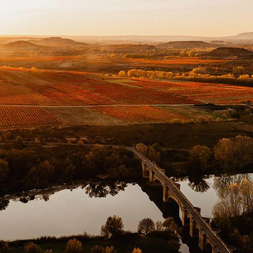 Medieval bridge over the Ebro river